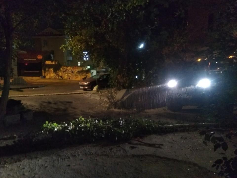 Жильцы дома оперативно перепарковали свои машины и убрали ветки