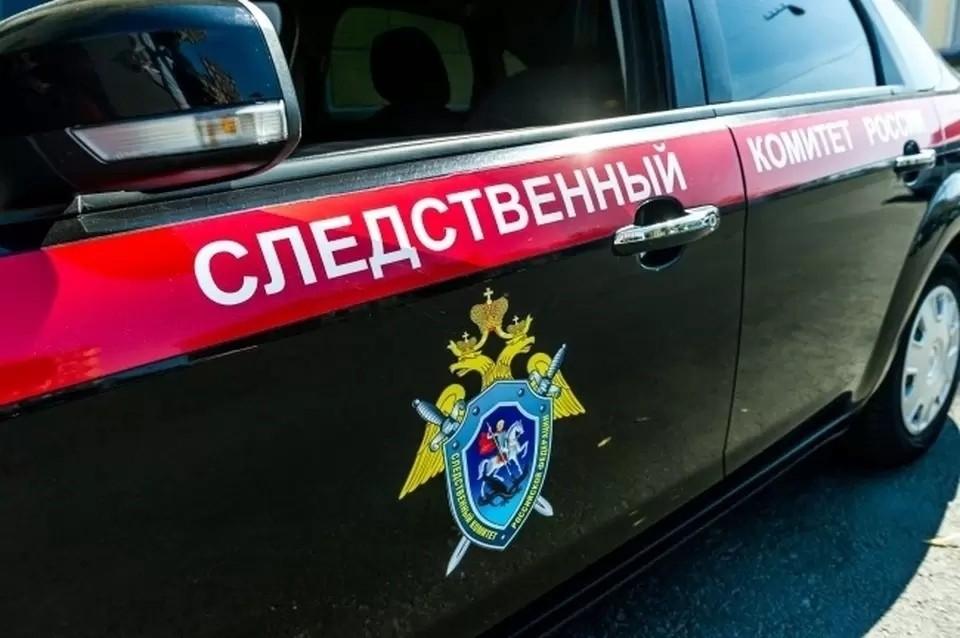 Дело взял на контроль Александр Бастрыкин.