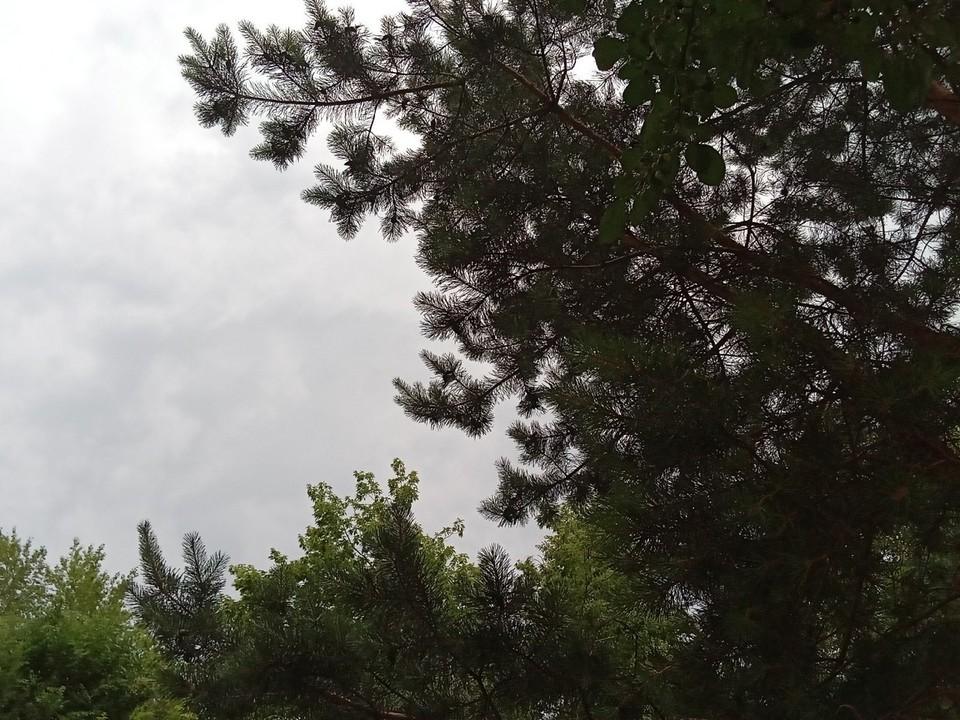 Погода на Ямале на 14 сентября.
